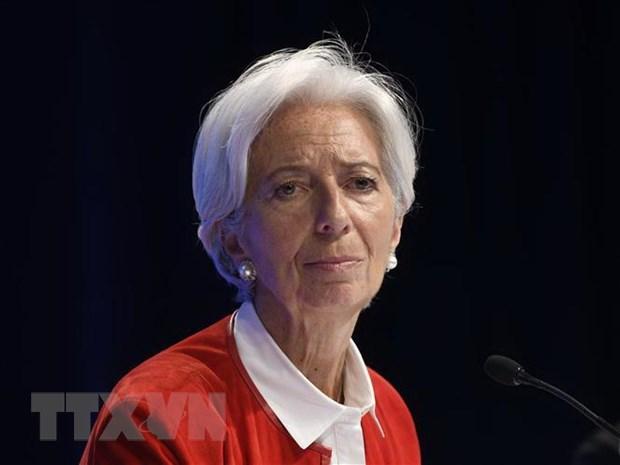 EU chua thong nhat trong viec lua chon lanh dao moi cua IMF hinh anh 1