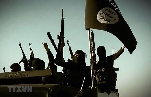 Lau Nam Goc: IS loi dung viec My rut quan de hoi sinh o Syria, Iraq hinh anh 1