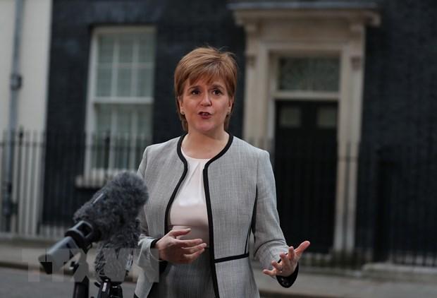 Scotland se khong loai tru lua chon nao nham ngan chan Brexit hinh anh 1
