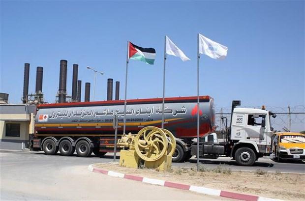 Israel bo lenh cam cat giam nhien lieu van chuyen vao Dai Gaza hinh anh 1