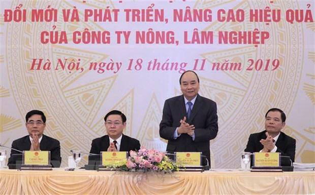 Thu tuong: Dat dai can duoc giao cho chu the truc tiep quan ly hinh anh 1
