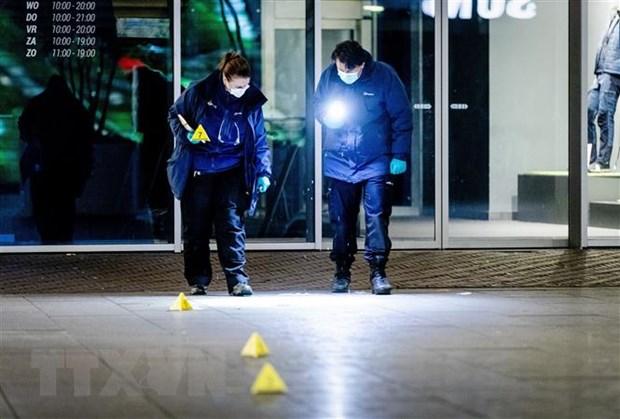 Ha Lan bat nghi pham vu dam dao o La Haye khien 3 nguoi bi thuong hinh anh 1