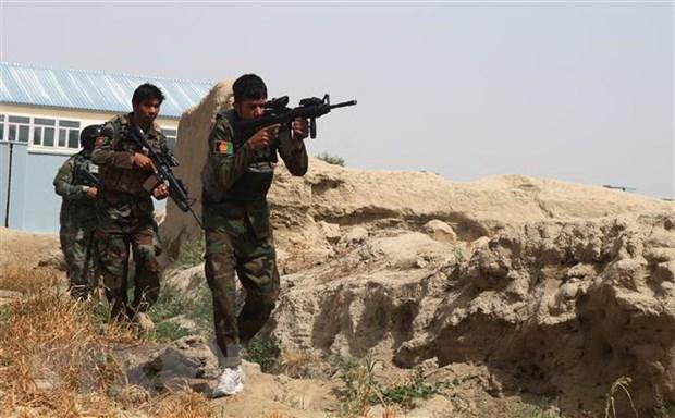 Duc keu goi Afghanistan the hien vai tro trong dam phan voi Taliban hinh anh 1