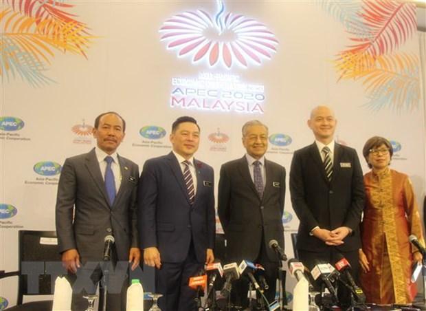 Logo Nam APEC 2020 - Bieu tuong cho su thong nhat va da dang hinh anh 1