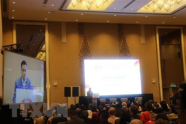 ISOM APEC 2020: Vi chau A-TBD phat trien ben vung va thinh vuong chung hinh anh 1