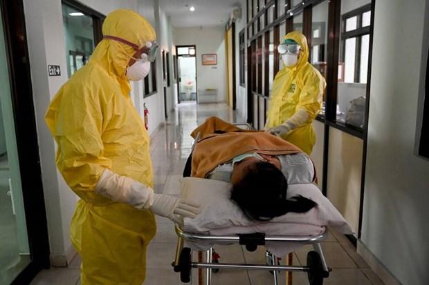 Dich COVID-19: Indonesia co truong hop dau tien nghi nhiem virus hinh anh 1