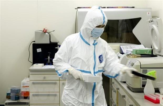 Gioi khoa hoc Viet nhap cuoc nhanh trong nghien cuu virus SARS-CoV-2 hinh anh 1