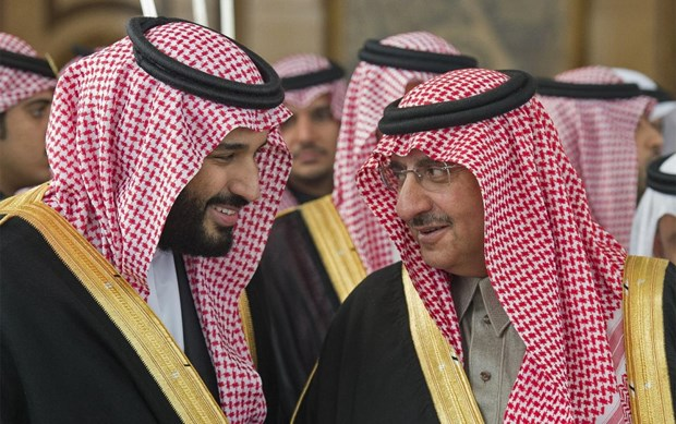 Reuters: Saudi Arabia bat giu em trai cua Quoc vuong Salman hinh anh 1