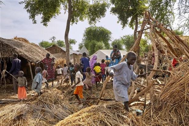 Viet Nam de cao tam quan trong viec thuc day chuyen tiep o Nam Sudan hinh anh 1
