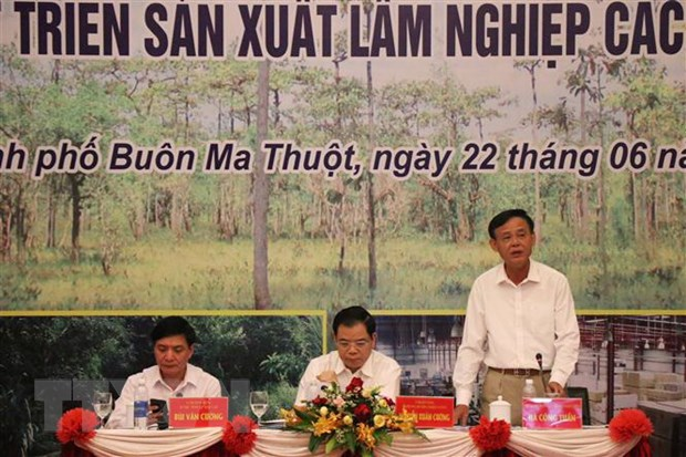 Thu truong Ha Cong Tuan: Xuat khau lam san se khong thap hon 12 ty USD hinh anh 2