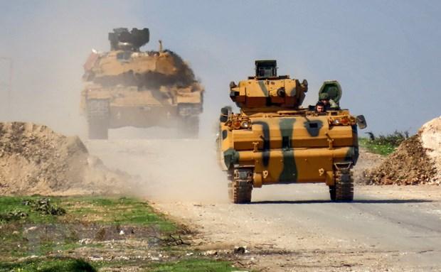 SOHR: Tho Nhi Ky dua 30 xe quan su vao mien Bac Syria hinh anh 1