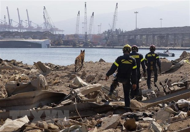Liban: Toa an binh se tim ra nguoi chiu trach nhiem ve vu no o Beirut hinh anh 1