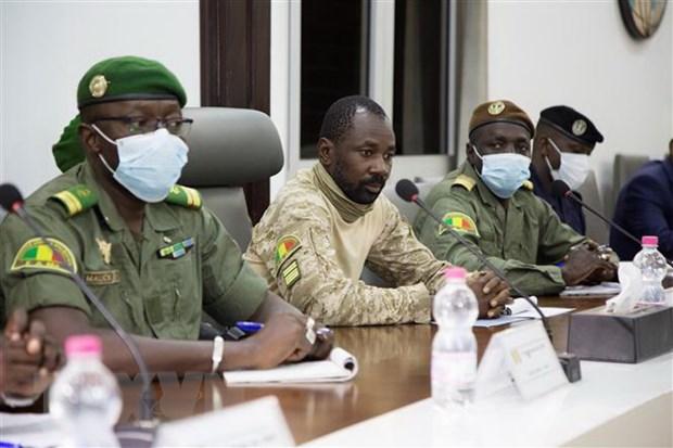 Mali: Luc luong quan su hoan cuoc hop ve chuyen giao quyen luc hinh anh 1