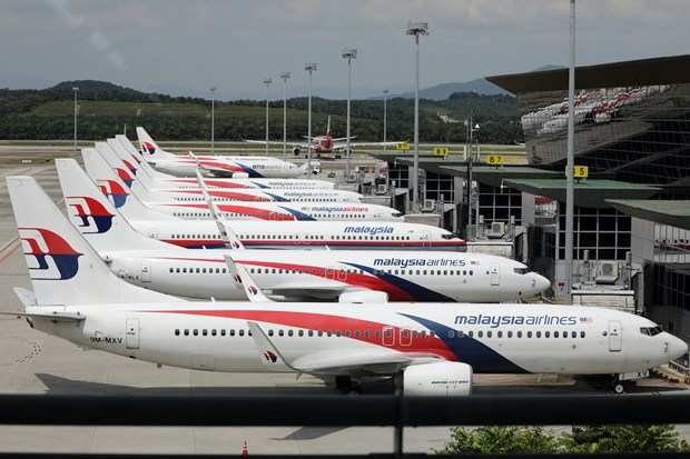 Malaysia Airlines co nguy co dung hoat dong vi van de tai co cau hinh anh 1