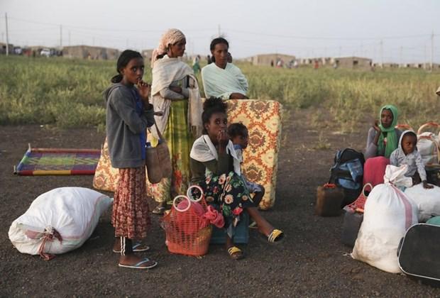 LHQ len ke hoach dua 200.000 nguoi ti nan Ethiopia toi Sudan hinh anh 1