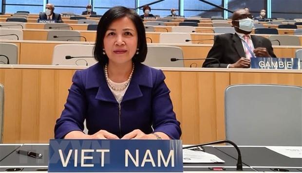 Viet Nam du phien ra soat chinh sach thuong mai cua Thai Lan tai WTO hinh anh 1
