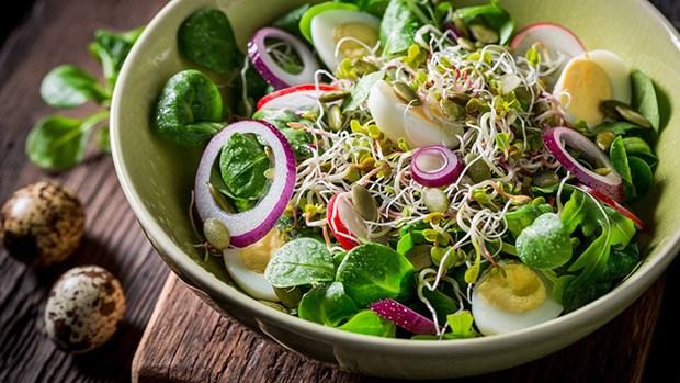 Mach nang cong so meo lam salad ngon dung chuan nha hang hinh anh 1