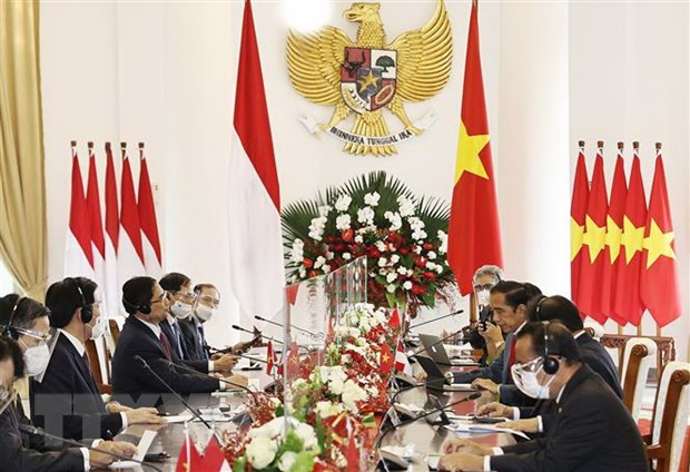 Viet Nam cung co va mo rong quan he Doi tac chien luoc voi Indonesia hinh anh 1