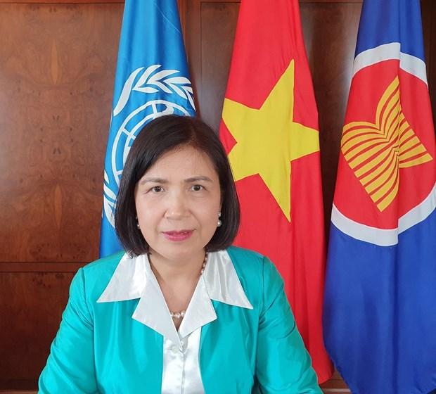 Hoi dong Nhan quyen LHQ thong qua nghi quyet do Viet Nam de xuat hinh anh 2