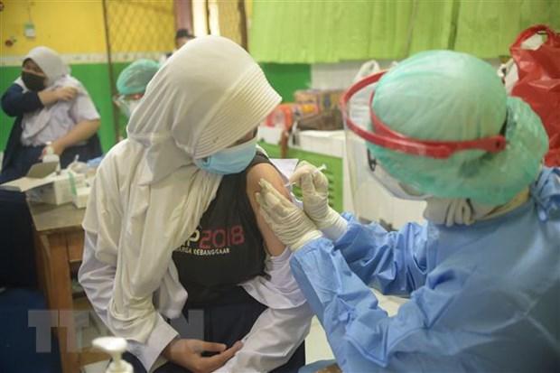 Indonesia dat muc tieu tiem vaccine cho 208 trieu dan de dat mien dich hinh anh 1