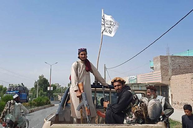Anh, Australia, Sec khan truong so tan cong dan khoi Afghanistan hinh anh 1
