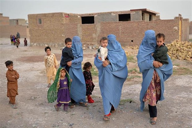 New Zealand keu goi Taliban duy tri quyen con nguoi tai Afghanistan hinh anh 1