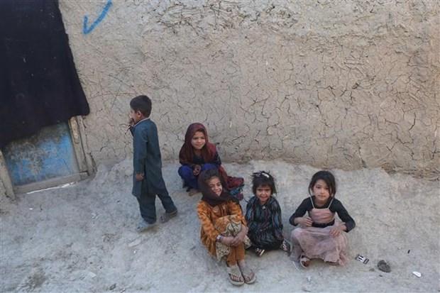 Taliban de nghi LHQ o lai Afghanistan thuc hien cac hoat dong nhan dao hinh anh 1