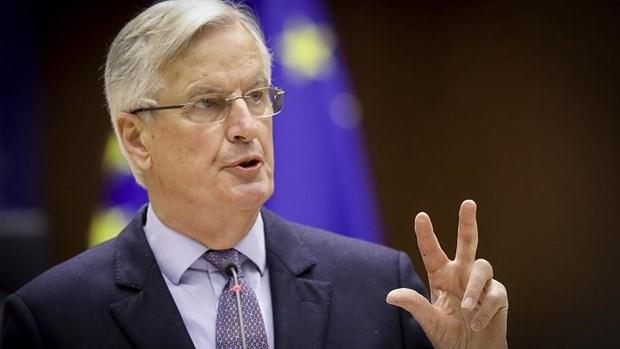 Cuu truong doan dam phan Brexit cua EU ra tranh cu Tong thong Phap hinh anh 1