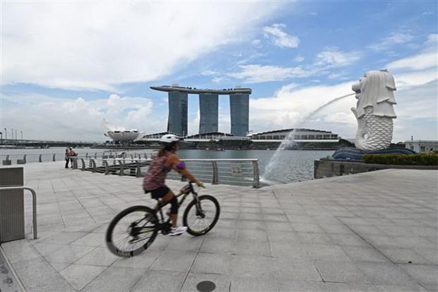 Singapore cho dieu tri COVID tai nha, Indonesia doi mat lan song moi hinh anh 1