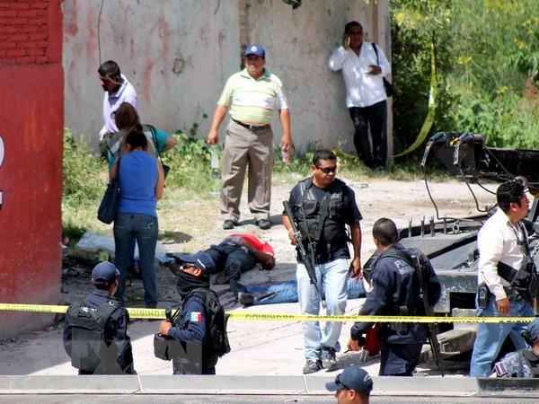 Mexico: Mot nha bao thiet mang trong vu xa sung o bang Veracruz hinh anh 1