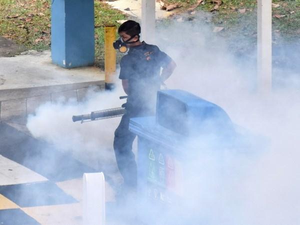 Singapore bat dau chien dich diet muoi mang virus Zika hinh anh 1