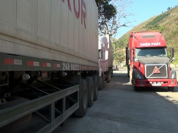 [Video] Quai xe tren cac xe container khien nguoi dan khiep via hinh anh 1