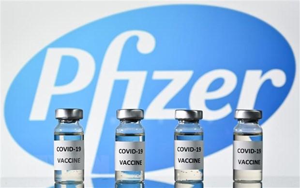 Pfizer bat dau tien trinh dang ky vacxin COVID-19 tai Brazil hinh anh 1