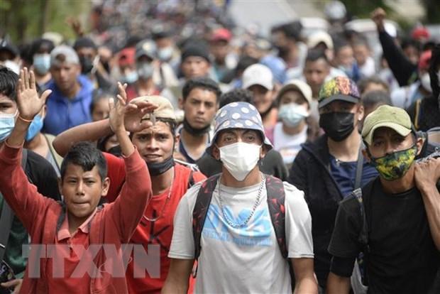 Van de nguoi di cu: Guatemala hoi huong hang ngan nguoi di cu Honduras hinh anh 1