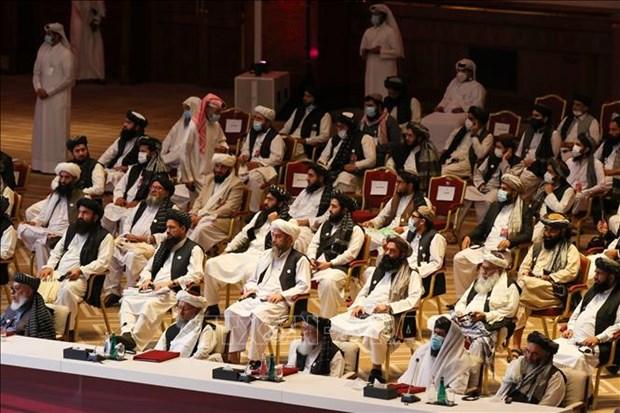 Chinh phu Afghanistan va Taliban noi lai dam phan hoa binh o Qatar hinh anh 1