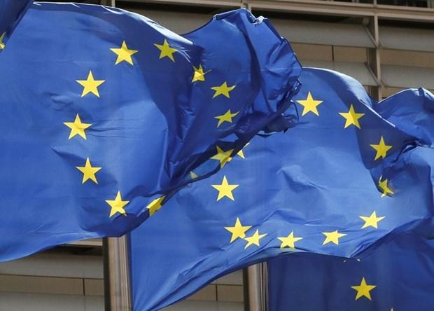 ZEW danh gia than trong ve trien vong phuc hoi kinh te Eurozone hinh anh 1