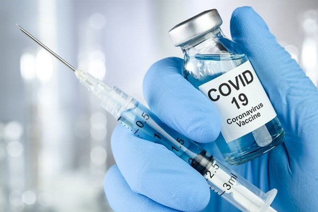 Brazil: Cuu quan chuc Bo Y te bi bat vi cao buoc ve viec mua vaccine hinh anh 1