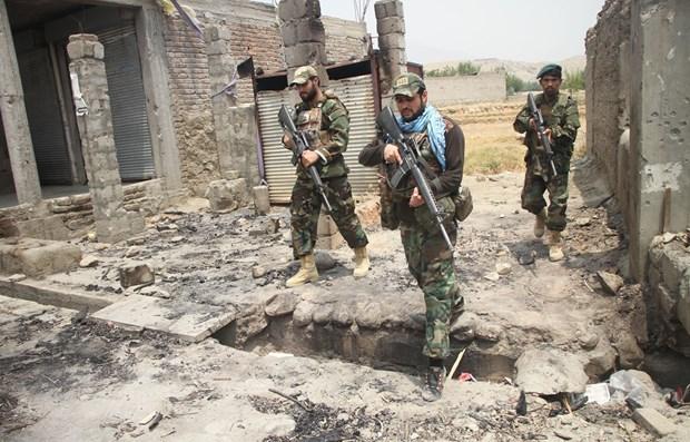 Quan chinh phu Afghanistan tieu diet hon 50 phan tu Taliban hinh anh 1