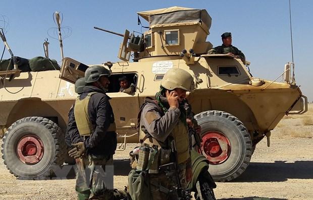 Afghanistan: Dung do tiep dien o ngoai o thanh pho Herat hinh anh 1