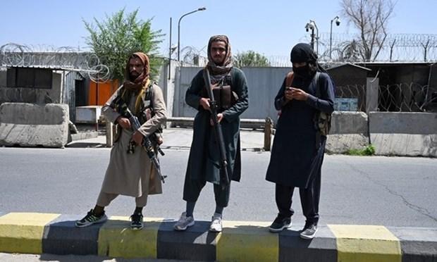 Tinh hinh Afghanistan: Taliban phong thich cac tu nhan chinh tri hinh anh 1