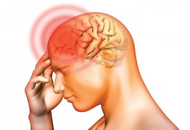 Nghien cuu ve lieu phap phong ngua benh Alzheimer o nguoi cao tuoi hinh anh 1