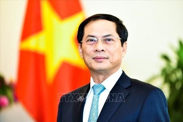 Bo truong Ngoai giao tra loi phong van ve chuyen di cua Chu tich nuoc hinh anh 1