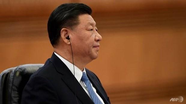Chu tich Trung Quoc gui dien chia buon ve vu roi may bay o Nga hinh anh 1