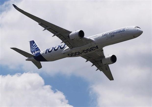 """Airbus va Boeing: """"Bo doi quyen luc"""" cua nganh che tao may bay hinh anh 2"""