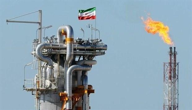 My: OPEC+ can hanh dong nhieu hon de ho tro kinh te phuc hoi hinh anh 1