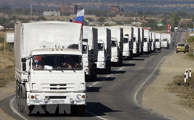 Ukraine phan doi doan xe cuu tro nhan dao thu ba cua Nga hinh anh 1