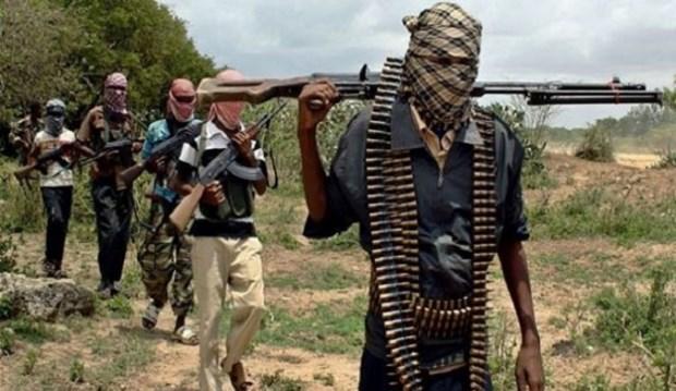 Nigeria: Quan doi chinh phu tieu diet 27 phan tu Boko Haram hinh anh 1