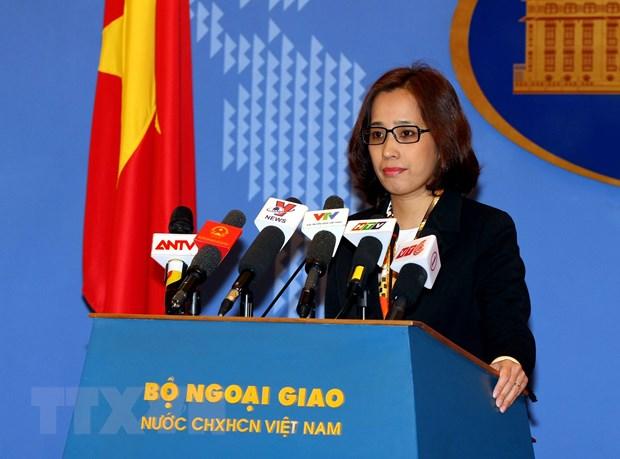 Viet Nam da nhan duoc thong tin vu bat nghi pham sat hai ba Ha Linh hinh anh 1