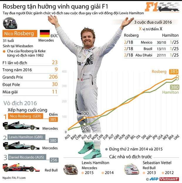 Duong kim vo dich F1 Nico Rosberg bat ngo tuyen bo giai nghe hinh anh 2