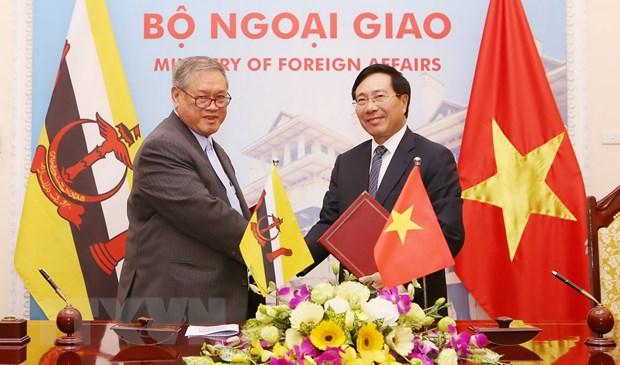Hop cap bo truong ngoai giao uy ban hop tac Viet Nam-Brunei hinh anh 1